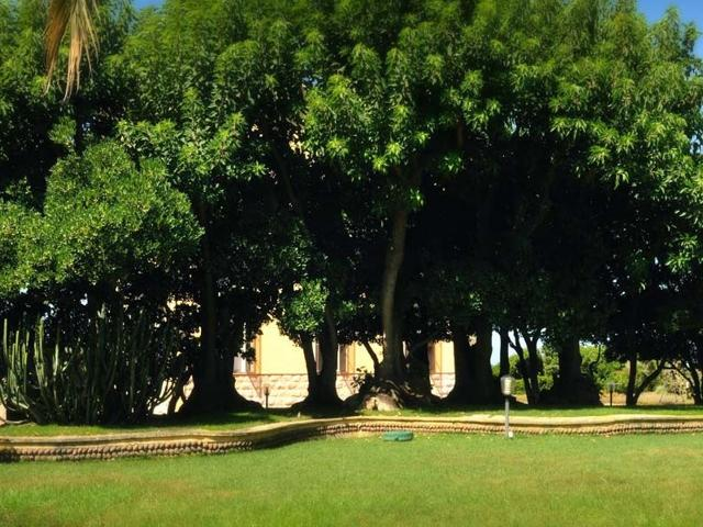 alghero hotel villa mosca.jpg