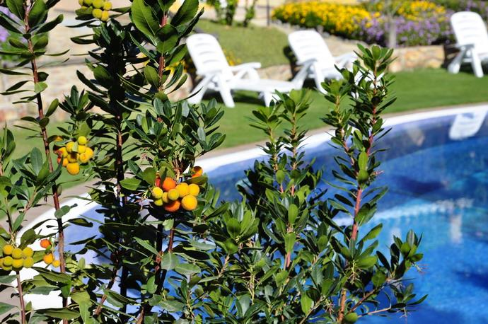zwembad in hotel su giganti in villasimius - zuid sardinie (3).jpg