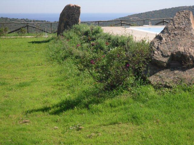 sardinie - vakantie in agriturismo - oost sardinie (7).jpg
