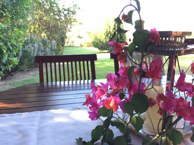 vakantiehuis sardinie - villa baia chia - villas sardinia (9).jpg