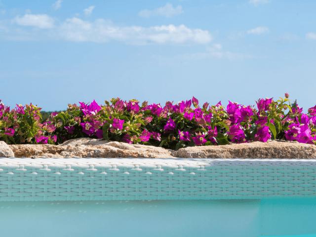huis aan het strand op sardinie - beach villa golfo aranci - sardinia4all (43).png