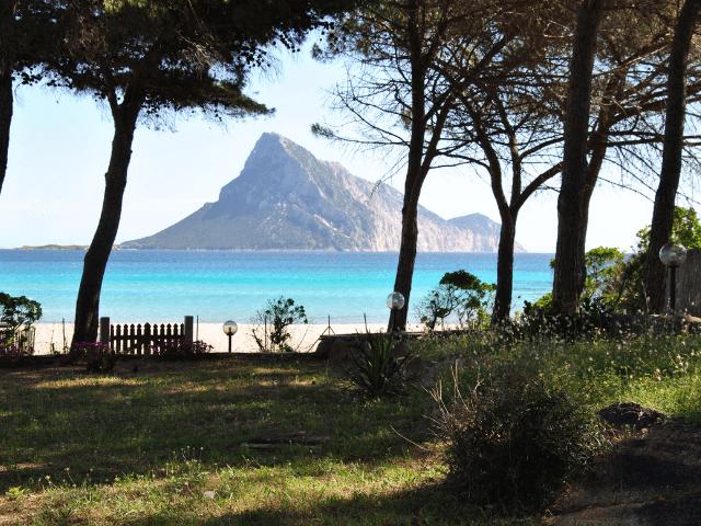 vakantiehuisjes sardinie aan het strand - ville porto taverna (5).png