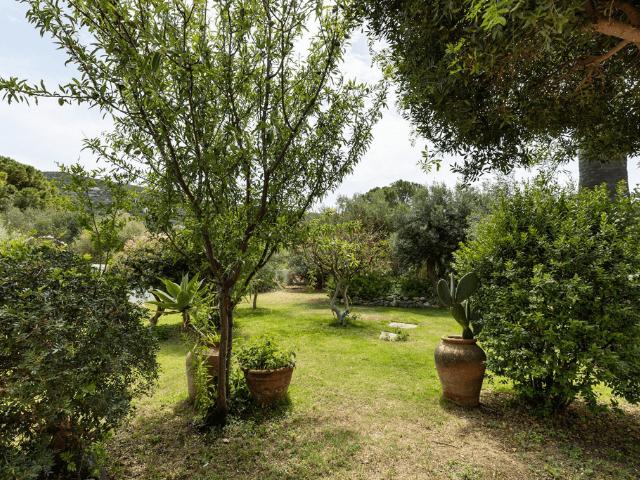villa met zwembad - torre delle stelle (30).png