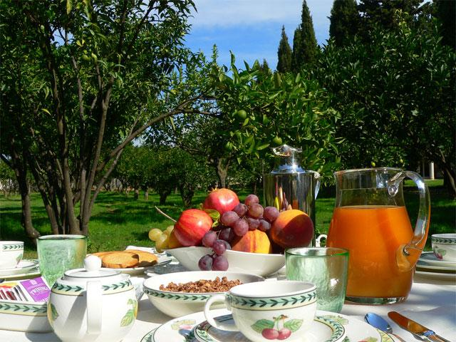 De tuin - Tarthesh Hotel -  Guspini - Sardinië