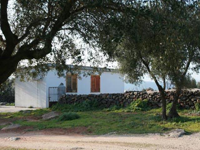 Agriturismo Sardinie - Dorgali - Boerderij Neule (18)