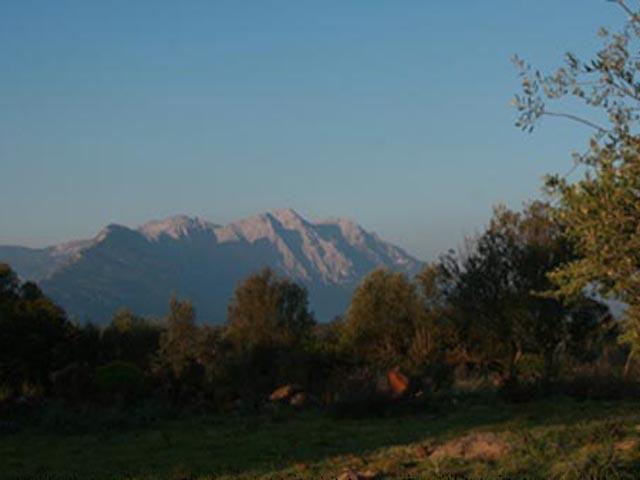 Agriturismo Sardinie - Dorgali - Boerderij Neule (7)