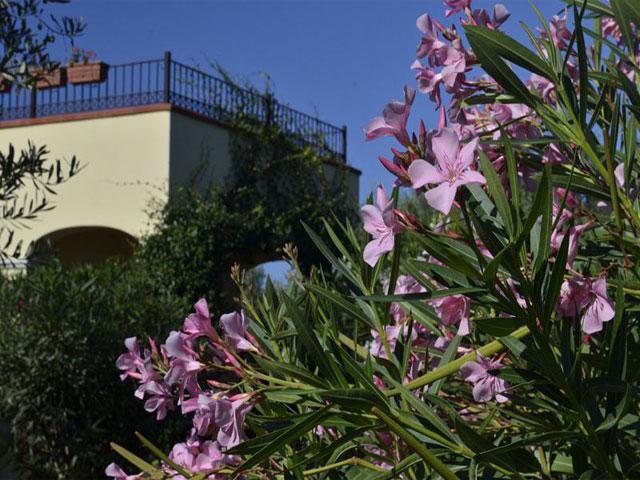 Sardinie - Agriturismo Vessus in Alghero - Sardinia4all (2)